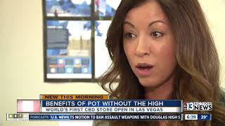 Download World's first CBD retail chain open in Las Vegas Video