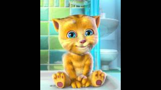 Download Talking Ginger Wishes You A Good Night Video