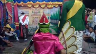 Download Pitik tarung barong tresno budoyo kemiren tuwek Video