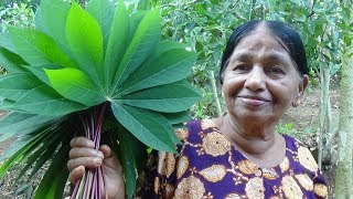 Download Healthy Village Foods ❤ Traditional Manioc (Cassava) Leaves Recipe prepared in my Village by my Mom Video