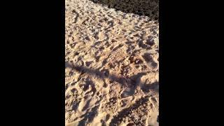 Download Praia de nudismo Video