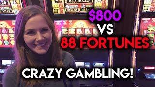 Download Crazy Gambling! $800 VS 88 Fortunes! Video