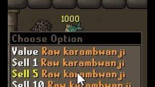 Download Karambwans UPDATED - BEST AFK FISHING IN GAME Video
