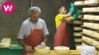 Download Cheesemaking - a visit at a Swiss dairyman Video