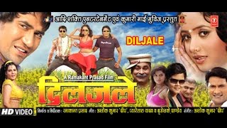 Download DILJALE in HD | SUPERHIT BHOJPURI MOVIE | Feat. DINESH LAL YADAV (NIRAHUA), RANI CHATTERJEE Video