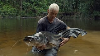 Download Watch Jeremy Finally Reel In This Elusive And Deadly Tapah | River Monsters Video