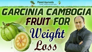 Download Garcinia Cambogia Fruit for Weight Loss | HCA (Hydroxycitric Acid) Video