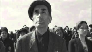 Download Schindler's List Jerusalem of Gold Yerushalayim Shel Zahav Steven Spielberg 1993 Video