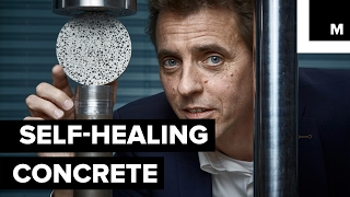 Download This concrete can heal itself as if it were alive Video