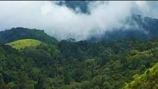 Download Seven Wonders of India: Kerala's Silent Valley National Park (Aired: December 2008) Video