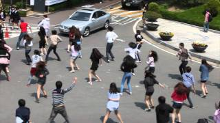 Download Flashmob : Sogang University Cheerleading team 서강대 응원단 플래시몹 Video