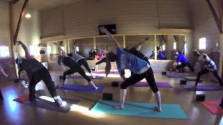 Download Yoga4Cats - Premiere Event! Video
