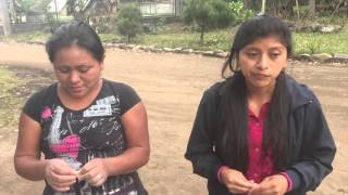 Download The Life of a Mayan Woman Video