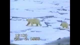 Download Всплытие АПЛ во льдах Video