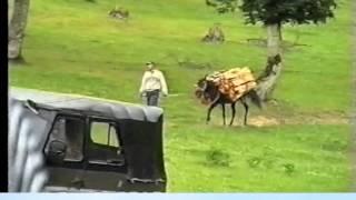 Download Gedebey Asiqlari-Ata Segahi (Sevil Gedebeyli & Asiq Elviz, Qarmonda Ferhad) Video