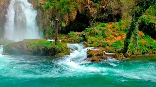 Download Relaxing Music with Nature Sounds - Waterfall HD Video