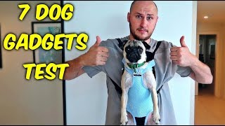 Download 7 Dog Gadgets Put to the Test part 5 Video