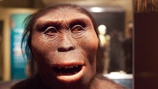 Download 5 Most Unknown and Fun Facts about Lucy. Our most famous ancestor Video