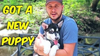 Download I Got A New Puppy Video