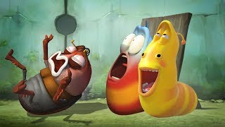 Download LARVA - BLOWN AWAY | Cartoon Movie | Cartoons For Children | Larva Cartoon | LARVA Official Video