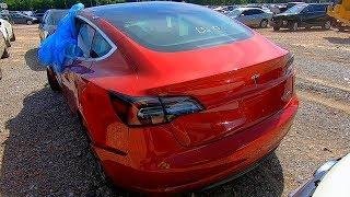 Download Copart Walk Around + Carnage 6-11-19 Tesla Model 3 Video