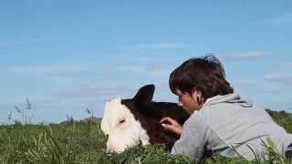 Download ″Animals are my friends... and I don't eat my friends.″ Video