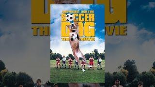 Download Soccer Dog Video