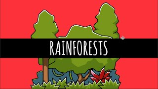 Download Rainforests - The Most Important Ecosystem Ever - GCSE Geography Video