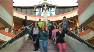 Download Trent University ″WILD THING″ lipdub Video