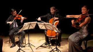 Download Barber: Adagio for Strings, Original Version, Dover Quartet Video
