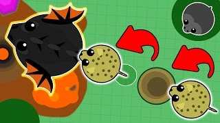 Download TROLLING BLACK DRAGONS IN MOPE.IO WITH CHEETAH! FUNNY MOMENTS IN MOPE.IO! (Mope.io New Update) Video