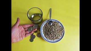 Download Hechizo para atraer CLIENTES con lentejas y monedas– ritual - conjuro y amarre para atraer dinero Video