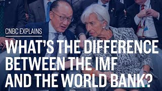 Download What's the difference between the IMF and the World Bank? | CNBC Explains Video