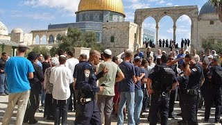 Download The Muslim Obsession with Jews on the Temple Mount Video