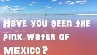 Download Have You Seen The Pink Water Of Mexico? Visiting Las Coloradas Video