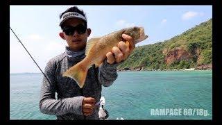 Download กัดจนเบื่อ กินซะปลดไม่ทัน ถล่มฝูงปลาเก๋า ที่ช่องแสมสาร ฺBY FISHINGEZ Video