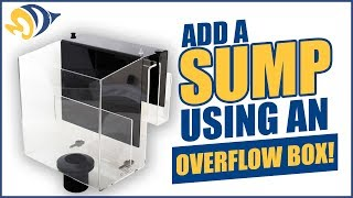 Download Add a Sump to Your Reef Tank Using an Overflow Box Video