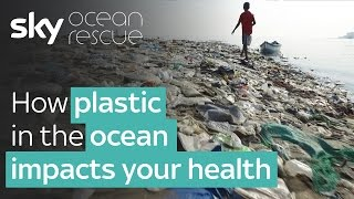 Download Report: How plastic in the Ocean impacts your health   #OceanRescue Video