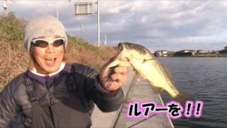 Download EG going! Vol.3 関和学 関東地方・霞ヶ浦水系編 (BASS) Video