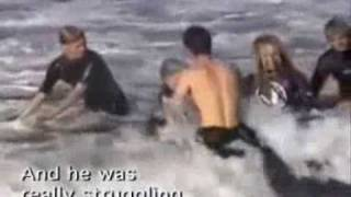 Download Surfing Shark Attack with Two Great White Sharks (4.5 meters) - 2besaved Video