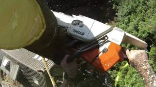 Download Tree Dismantle Near A House Video