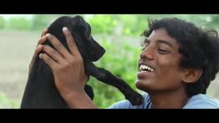 Download ″NAAI KUTTY″ Short Film Full HD 1080p. Video