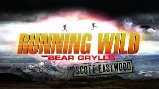 Download Scott Eastwood Video