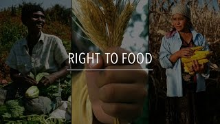 Download FAO Policy Series: Right to Food Video