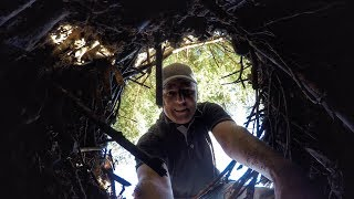 Download What's inside a Beaver Home? Video