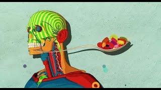 Download Cómo el azúcar afecta el cerebro - Nicole Avena Video