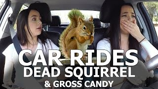Download Car Rides - Dead Squirrel & Gross Candy - Merrell Twins Video