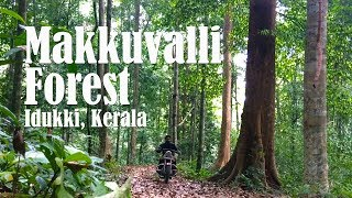 Download Biking in Makkuvalli Forest, Idukki - Kerala Video