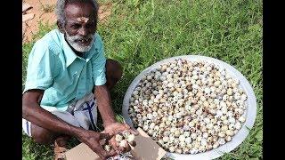 Download 500 Quail eggs Prepared by my Daddy ARUMUGAM / Village food factory Video