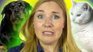Download Do Animals Get Fat? | Zoo La La (Ep 40) | Earth Unplugged Video